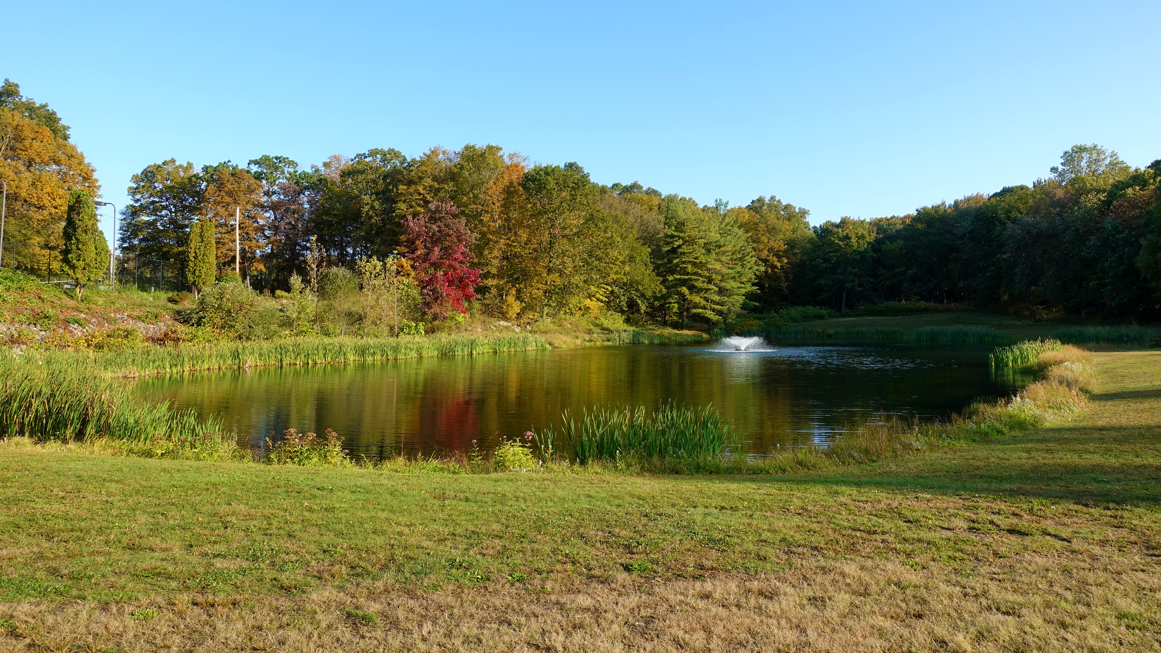 View of the pond at McGrath Park in Prospect, Connecticut