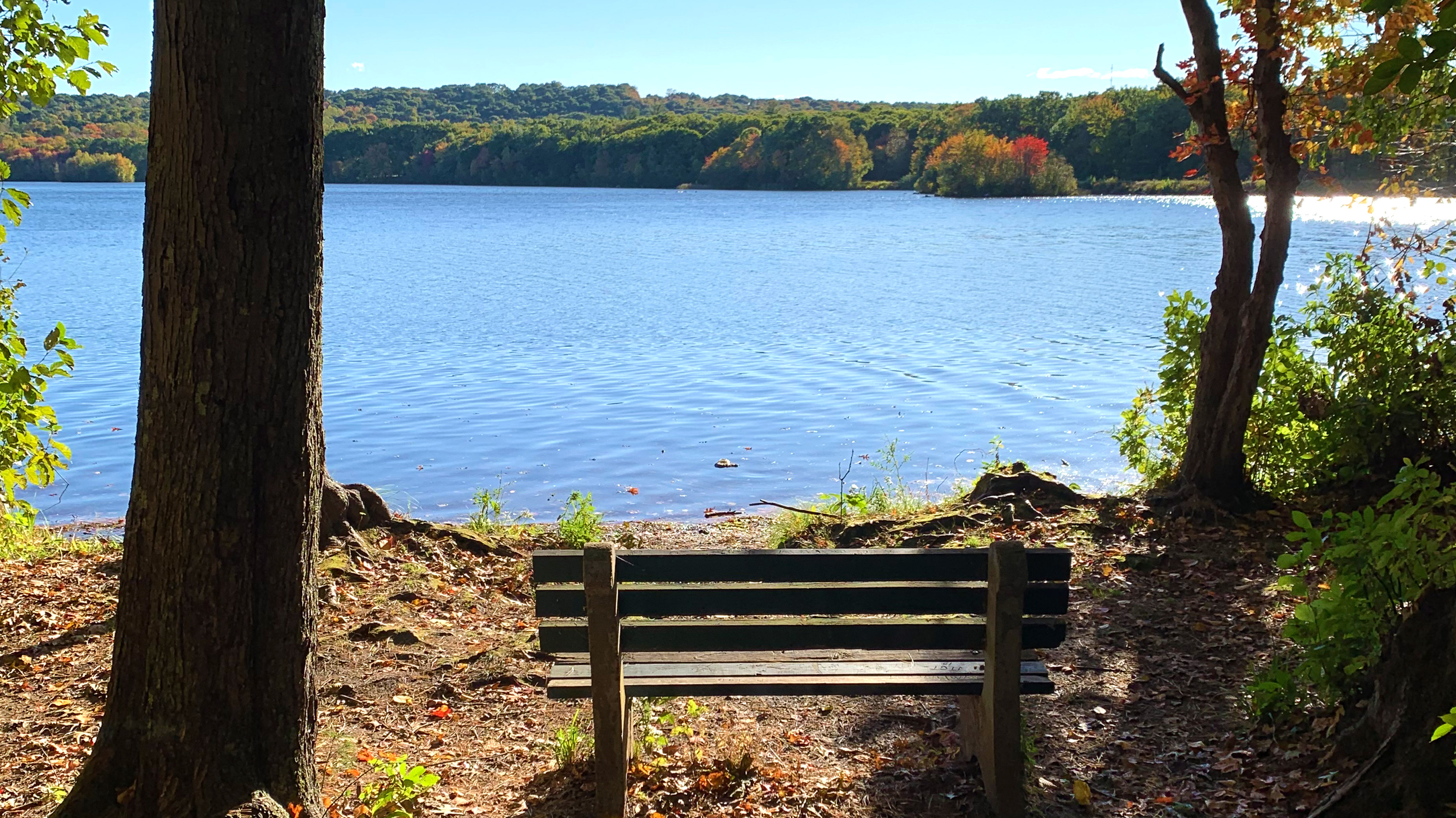 Bench overlooking the water at Scoville Reservoir in Wolcott, CT